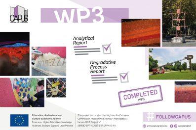 Work Package 3: Final Report