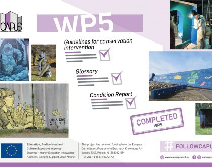Work Package 5 (Implementation of a Conservation Methodology)- Final Report